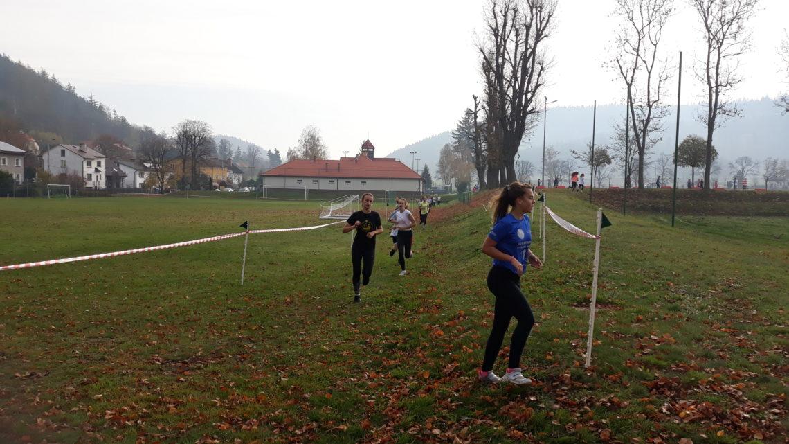 Indywidualne/drużynowe biegi przełajowe – Igrzyska Młodzieży Szkolnej dziewcząt i chłopców